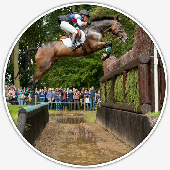 Nico Morgan - Top equestrian or equine photographer