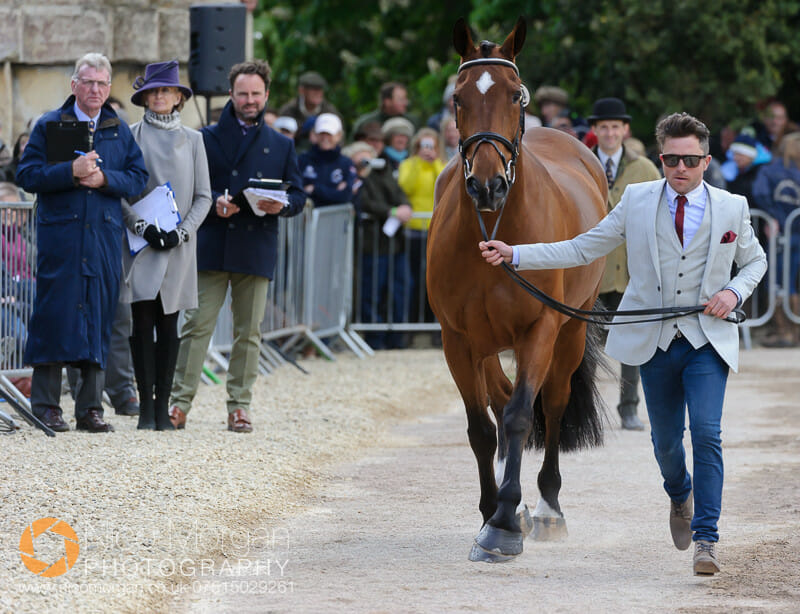 ben hobay mulrys error - Badminton 2015 - The first inspection