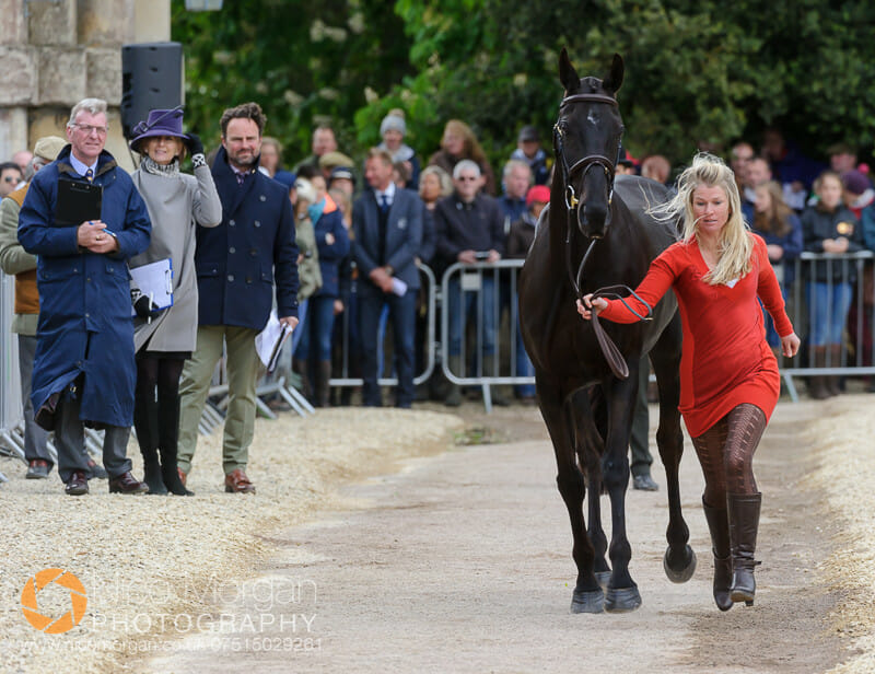 jonelle price classic moet - Badminton 2015 - The first inspection