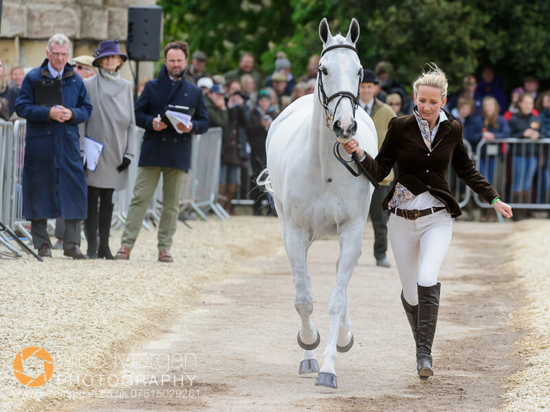 julie tew lord of the owls - Badminton 2015 - The first inspection