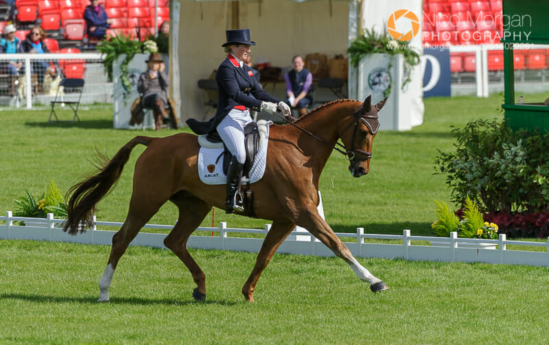 laura collett and grand manoeuvre - Badminton Horse Trials - Nicholson and Nereo lead after dressage.