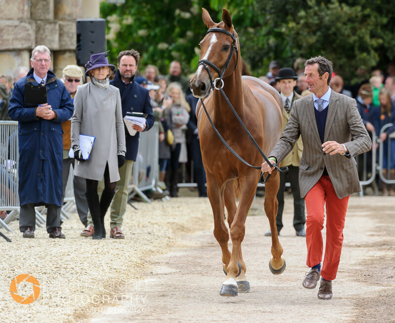 mark todd oloa - Badminton 2015 - The first inspection