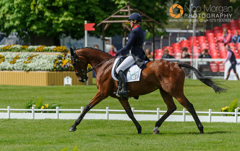 mary king and kings temptress - Badminton Horse Trials - Nicholson and Nereo lead after dressage.