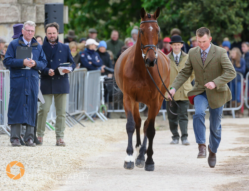 matthew heath and the lion - Badminton 2015 - The first inspection