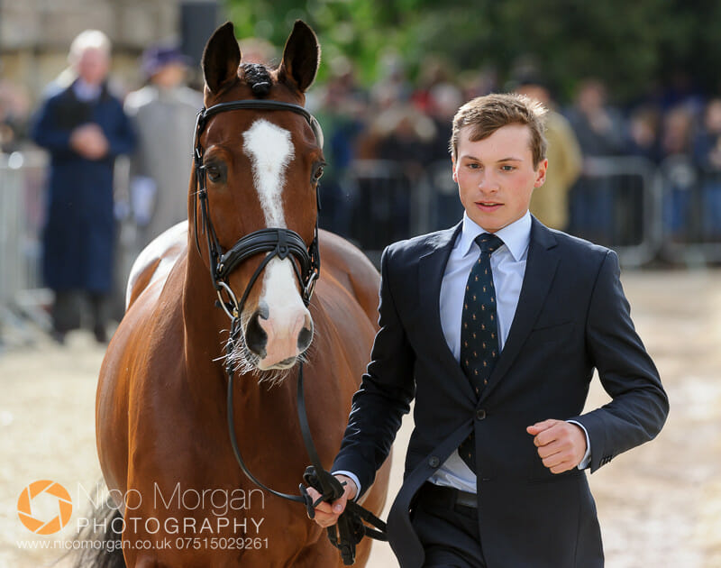 niklas bschorer tom tom go 3 - Badminton 2015 - The first inspection