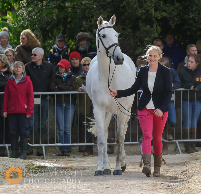 olivia wilmot cool dancer - Badminton 2015 - The first inspection