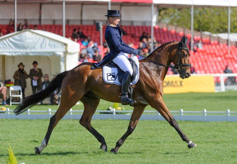 michael jung la biosthetique sam fbw dressage badminton horse trials 2013 006 original - Michael Jung