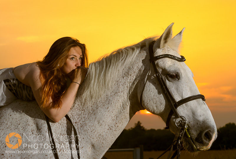 equestrian portrait photographer sunset - Laura Keeley yard shoot, Bulby, Lincolnshire