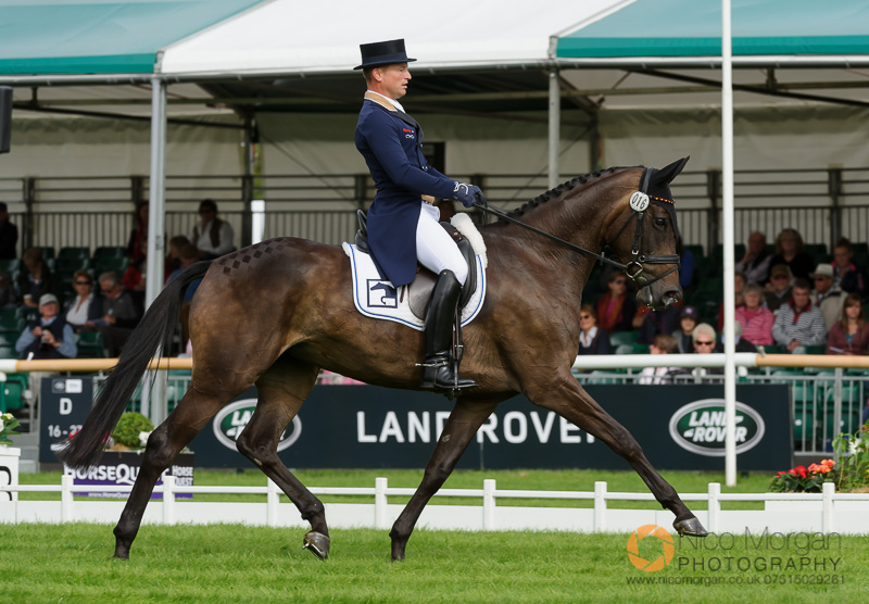 michael jung ger and fischerrocana fst burghley 2015 - Land Rover