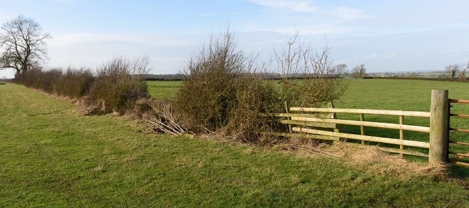 Melton Hunt Club Ride fences