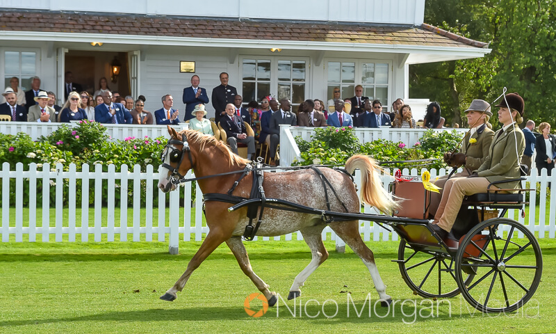 carriage drivers process past her majesty the queen - Event Photography