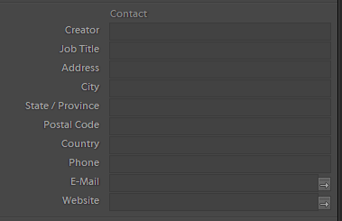 lightroom contact metadata - SEO for images. Are your images at the top of searches?