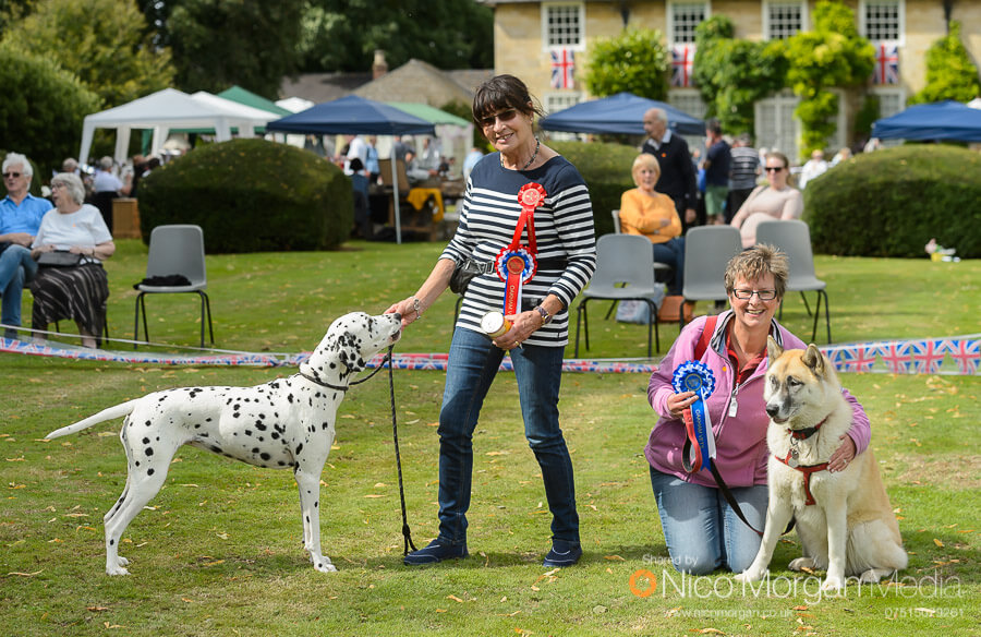 champion and reserve dog show - Event Photography