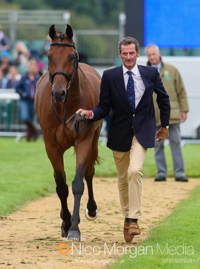 Sir Mark Todd and Leonidas II. NZB Campino was a late withdrawal.