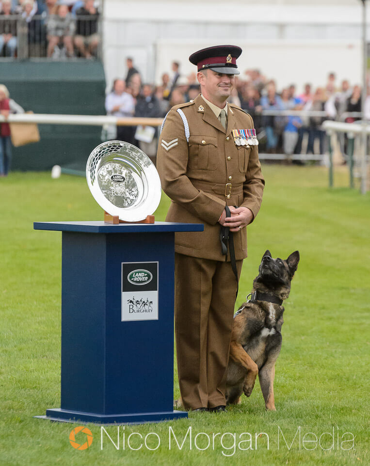 Caesar the Army Arms and Explosive Search dog