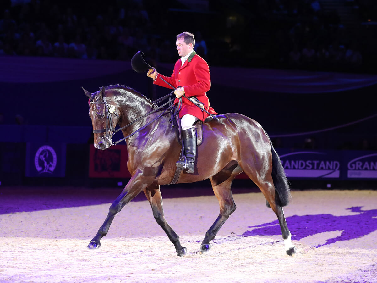 robert walker and view point hunter champions at hoys 2017 - Event Photography