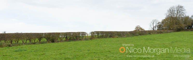 Melton Hunt Club Ride 2017: Fence 20 approach