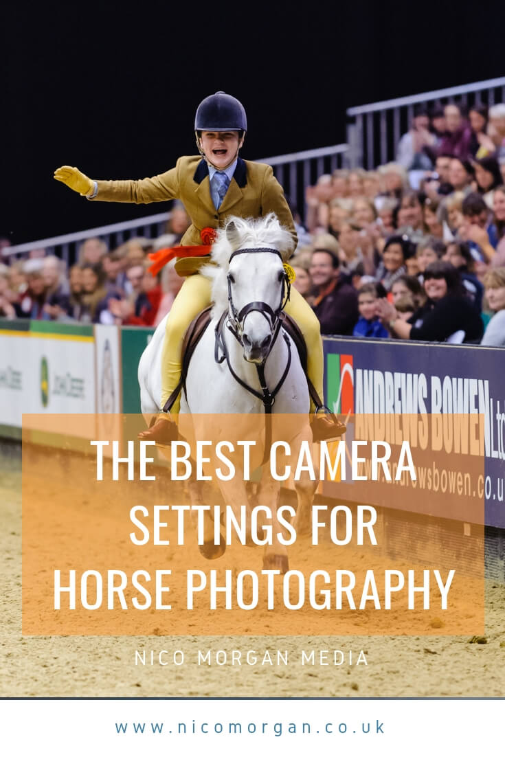 Best Camera Settings for horse photorgraphy
