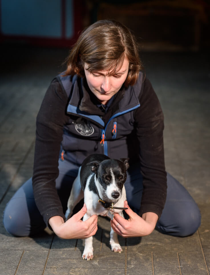 Veterinary physiotherapist Samantha Finnemore treating a canine client