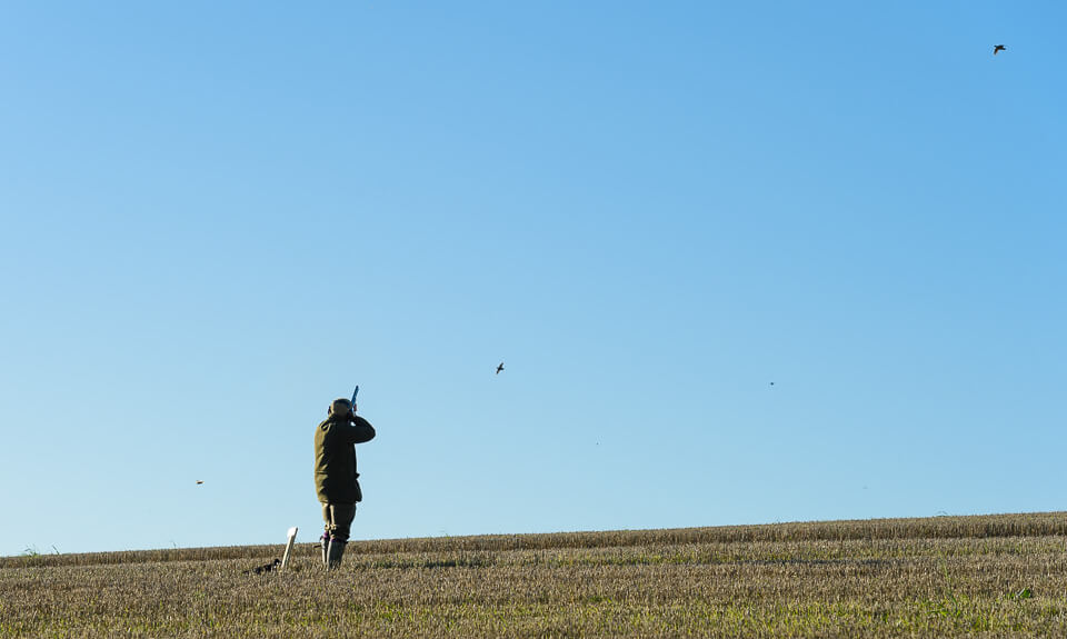 Game shooting photography for the GWCT at Ropsley