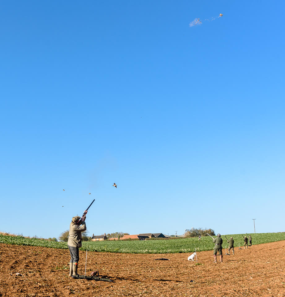 Game shooting photography for the GWCT at Belvoir Castle
