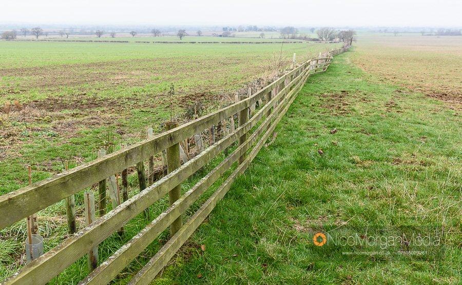 Fence 7, arable option