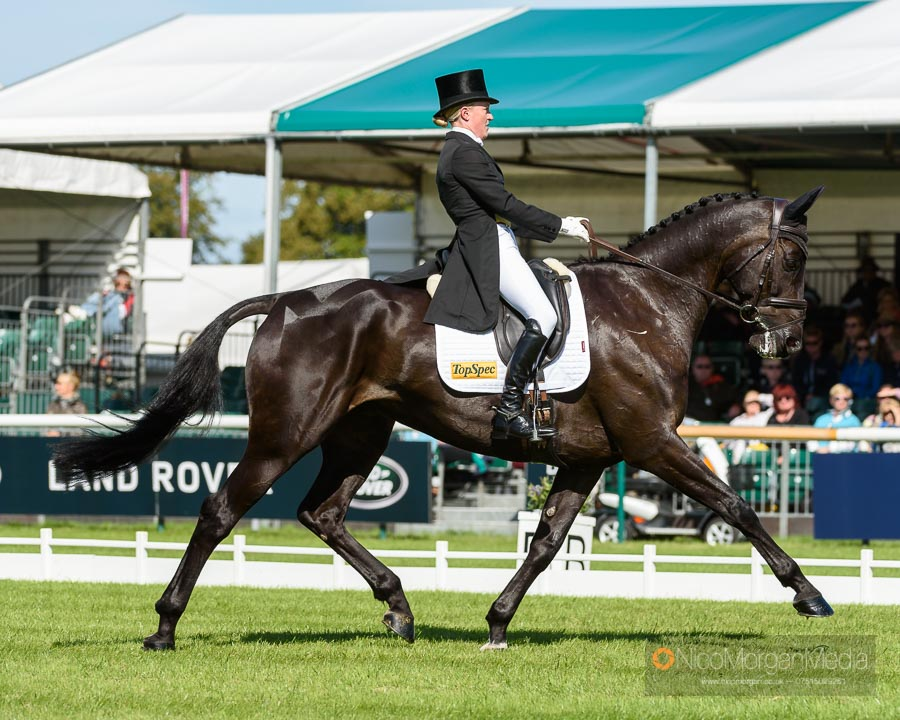 Eliza Stoddart and PRIORSPARK OPPOSITION FREE at Burghley Horse Trials