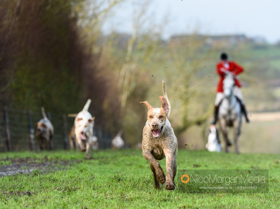 Cottesmore Hunt Parva Lodge 24Dec19 149 - The Cottesmore Hunt Boxing Day meet in Oakham
